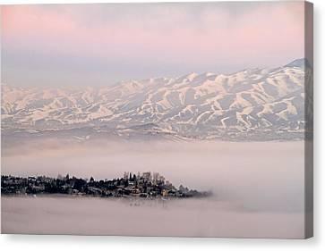 Heavy Fog At Sunrise Canvas Print by Donna Kennedy