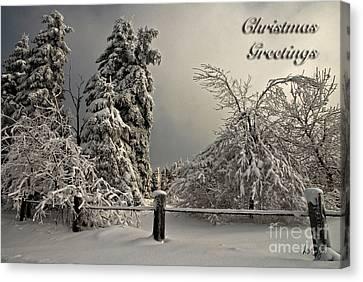 Heavy Laden Christmas Card Canvas Print by Lois Bryan