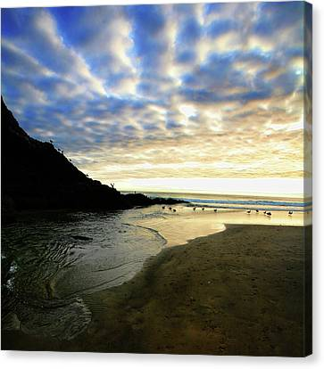 Heceta Head At Dusk Canvas Print by Bonnie Bruno