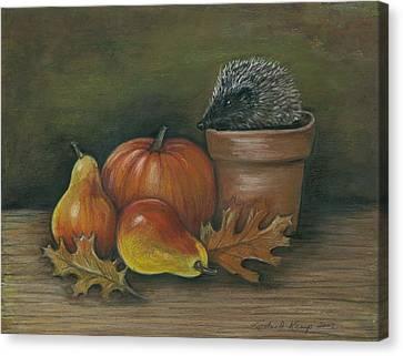 Hedgehog In Flower Pot Canvas Print by Linda Nielsen