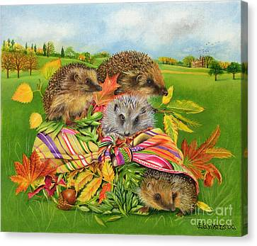 Hedgehogs Inside Scarf Canvas Print