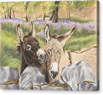 Hee Haw Canvas Print by Vanda Luddy