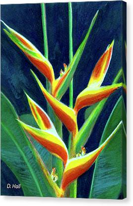 Heliconia Flowers #249 Canvas Print by Donald k Hall