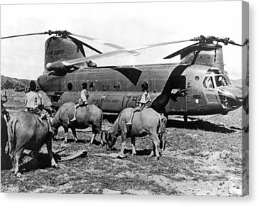 Helicopters And Water Buffalos Canvas Print by Underwood Archives