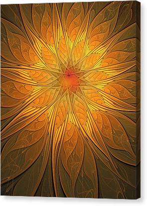 Helio Canvas Print by Amanda Moore