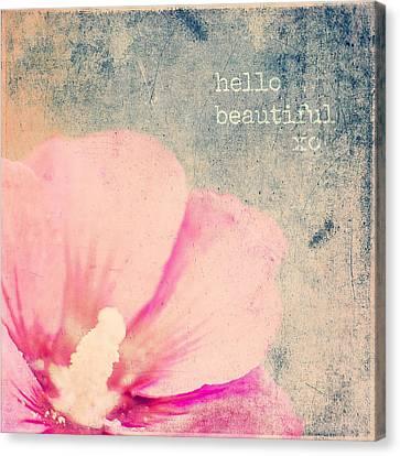 Hello Beautiful Canvas Print by Brandi Fitzgerald