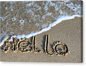 Hello Canvas Print by Dorothy Cunningham