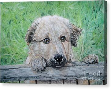 Hello Puppy Canvas Print