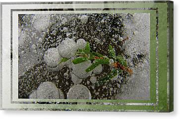 Hemlock In Bubbles Canvas Print by Doug Bratten