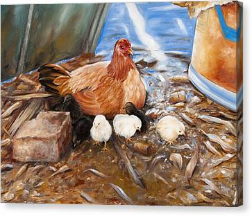 Hen And Biddies Canvas Print