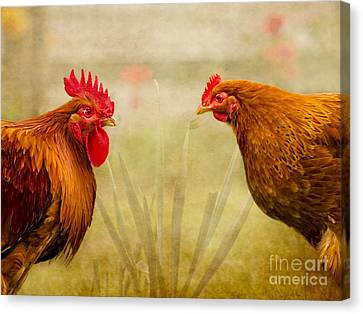 Hen Party Do You Come Here Often Canvas Print by Linsey Williams