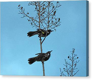 Canvas Print featuring the photograph Henry And Henrietta by Mark Blauhoefer