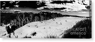Henty Dunes Tasmania Canvas Print by Jorgo Photography - Wall Art Gallery