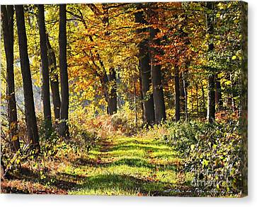 Herbsttag Canvas Print by Olivia Narius