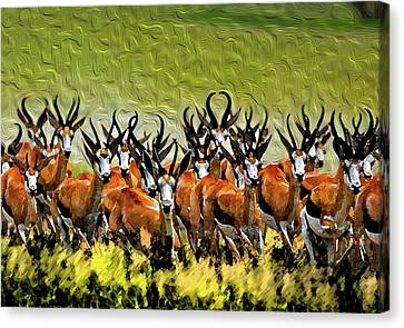 Herd 2 Canvas Print by Bruce Iorio