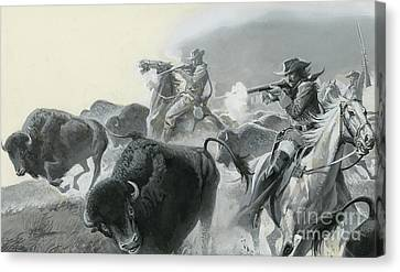 Herd Of Buffalo Canvas Print by Severino Baraldi