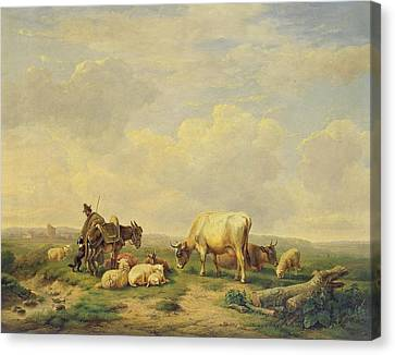Herdsman And Herd Canvas Print by Eugene Joseph Verboeckhoven