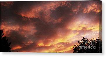Here Comes The Sun Canvas Print by Marsha Heiken