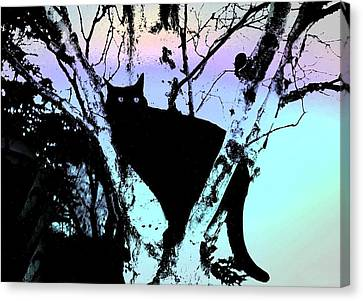 Here Kitty Kitty Canvas Print by Shirley Sirois