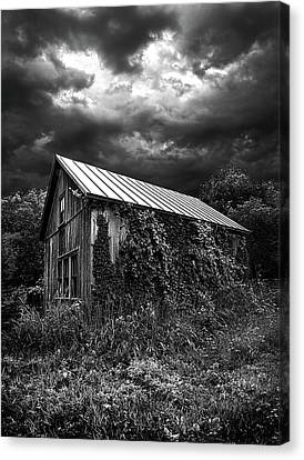 Hereafter Canvas Print by Phil Koch