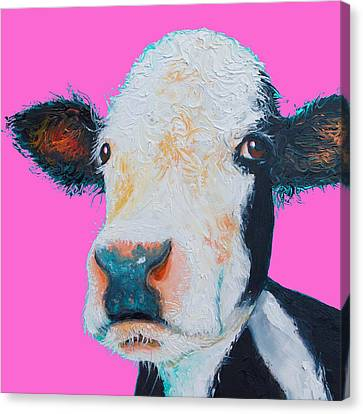 Hereford Cow On Hot Pink Canvas Print by Jan Matson