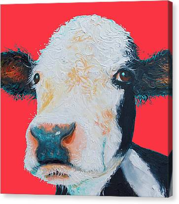 Hereford Cow Painting On Red Background Canvas Print