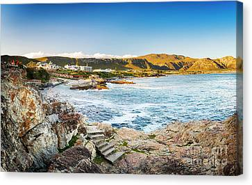 Hermanus South Africa Canvas Print by Tim Hester