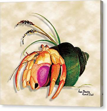 Canvas Print featuring the painting Hermit Crab In Green Shell by Anne Beverley-Stamps