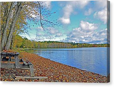 Fall Picnic In Maine Canvas Print
