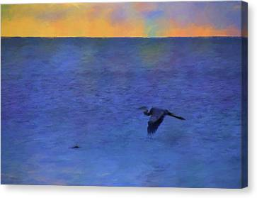 Canvas Print featuring the photograph Heron Across The Sea by Jan Amiss Photography