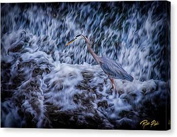 Heron Falls Canvas Print by Rikk Flohr
