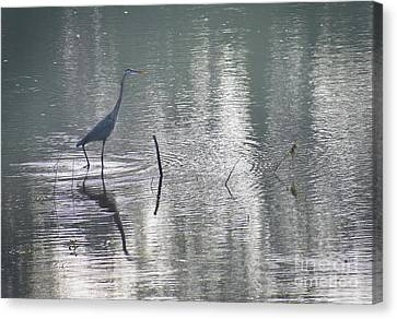 Canvas Print featuring the photograph Heron In Pastel Waters by Skip Willits