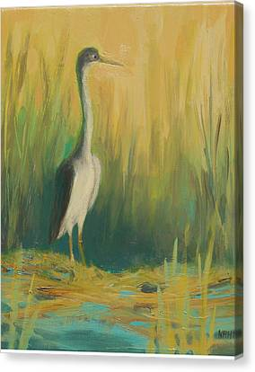 Heron In The Reeds Canvas Print by Renee Kahn