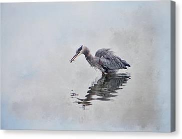 Heron Fishing  - Textured Canvas Print