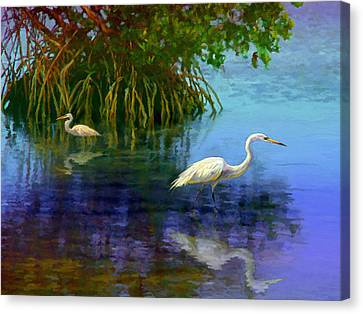 Herons In Mangroves Canvas Print by David  Van Hulst