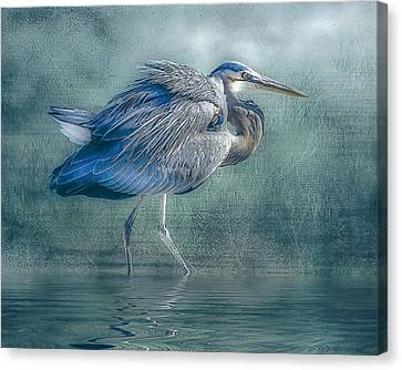 Heron's Pool Canvas Print by Brian Tarr