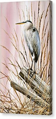 Herons Watch Canvas Print by James Williamson
