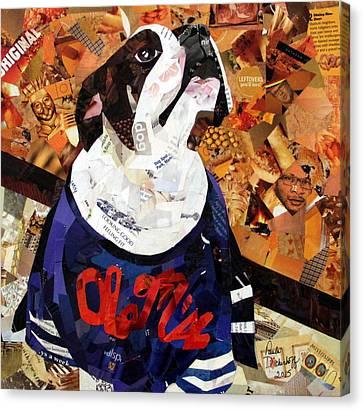 He's A Fan Canvas Print by Paula Dickerhoff