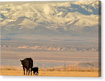 Canvas Print featuring the photograph Hey Mom..  Wait Up by Al Swasey