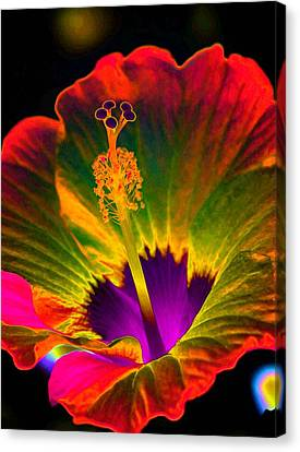 Hibiscus 01 - Summer's End - Photopower 3189 Canvas Print by Pamela Critchlow