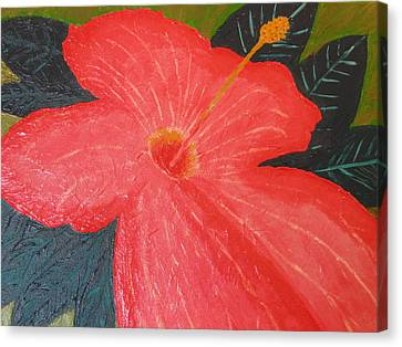 Canvas Print featuring the painting Hibiscus by Barbara Yearty
