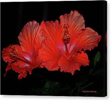 Peaches Canvas Print - Hibiscus Blooms Aglow by DigiArt Diaries by Vicky B Fuller