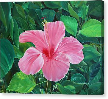 Canvas Print featuring the painting Hibiscus by Elizabeth Lock