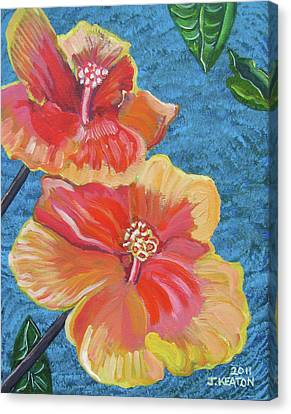 Hibiscus Flowers Canvas Print by John Keaton
