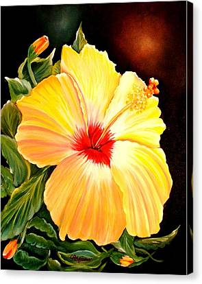 Hibiscus Glory Canvas Print