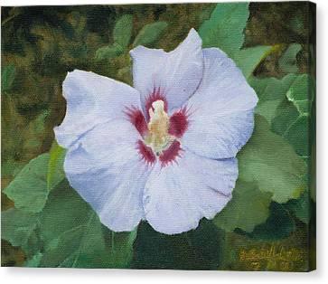 Hibiscus Canvas Print by Joshua Martin