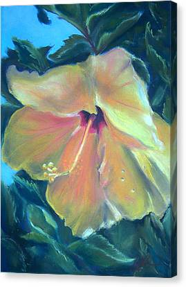 Hibiscus Canvas Print by Lisa Ikegami