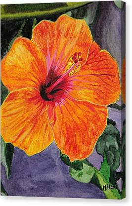 Hibiscus Canvas Print by Michelle Hand