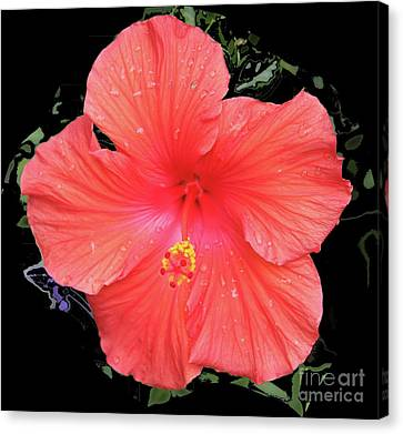 Canvas Print - Hibiscus by Nu Art