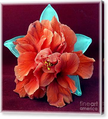 Hibiscus On Glass Canvas Print